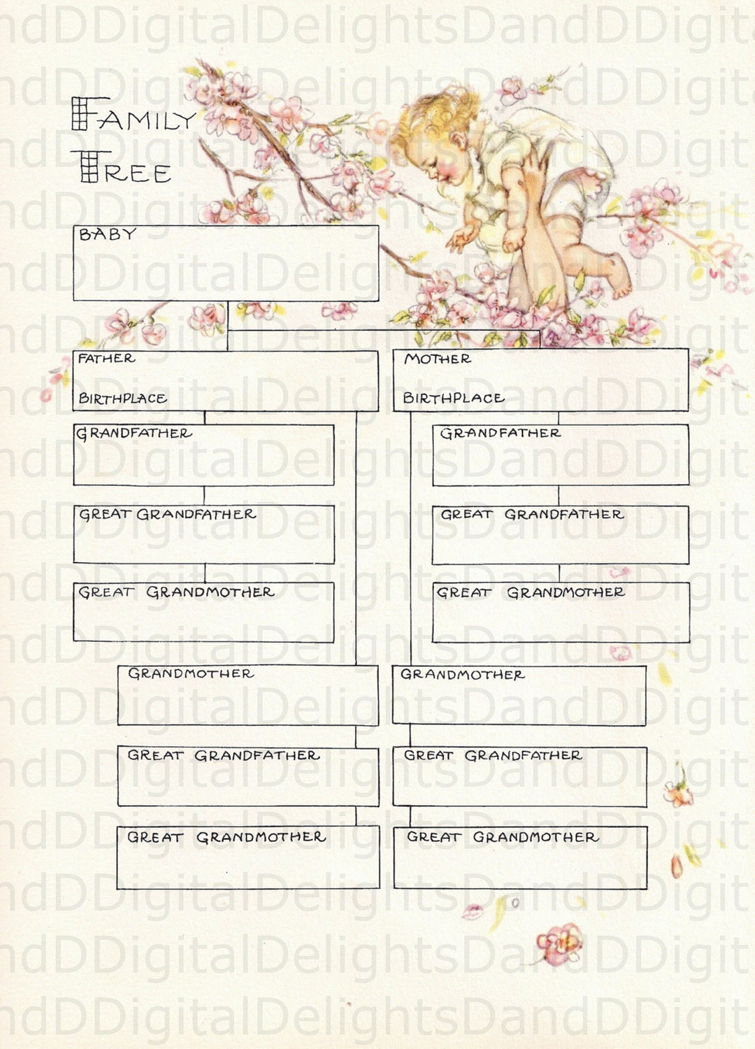 Gorgeous Baby S Family Tree Color Illustration And Text