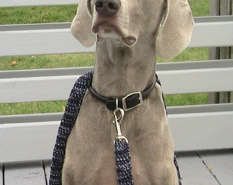 Weimaraner Dog Leash, Dog gift, Six Foot Dog Leash, Gray Dog Leash, Variegated Gray  Leash, Handmade VGDL01