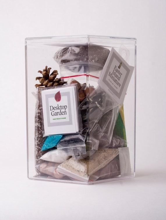 Desktop Micro-Environment - A little terrarium kit for your office or whatever