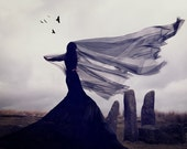 """Artwork. Limited Edition Mounted Fine Art Photography Print - """"Raven's Song"""" 12x16 inches"""