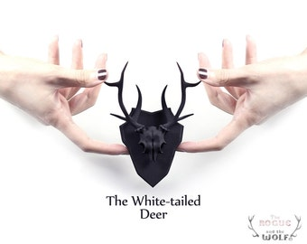 The White-tailed Deer Mini Faux Taxidermy in black - A white-tailed Deer Skull with elegant antlers, mounted and ready to adorn your wall