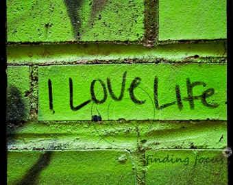 I Love Life Inspirational Photography, Key Lime Kelly Green Black Brick Urban Graffiti Square Photo TtV Street Art Hipster Quote Wall Decor