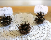 CUSTOM ORDER for Nicole 90 Pinecones place cards as shown