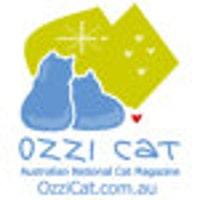 OzziCat
