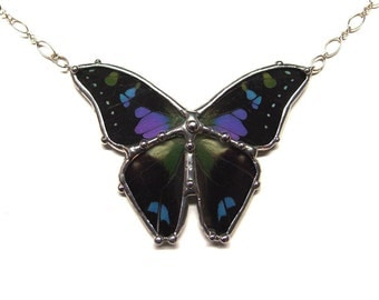 Graphium Weiskei Real Butterfly Necklace - Purple Spotted Swallowtail