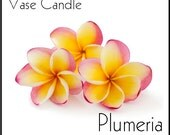 Plumeria Candle Refill for Vase Candle