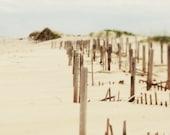 Beach Decor Beach Sepia, Brown OBX 8x10 Modern Wall Decor, Office Decor,