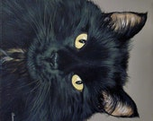 Custom Pet Portrait Pet Painting 8x10 Your Dog Cat or Horse Any Animal Welcome