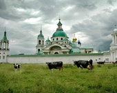 Cows and Kremlin. Green church. Yakovlevsky Monastery. Rostov, Russia.