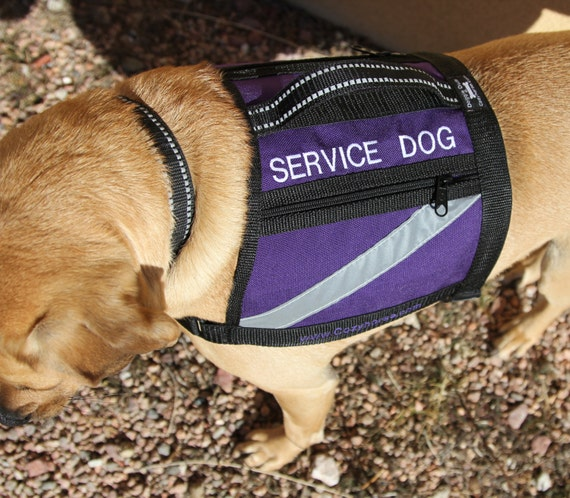 Dog Vest With Handle Service Dog Vest With Handle