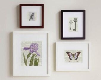 Print Set, violets and lavendar