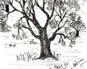 Oak In Winter Original Ink Drawing