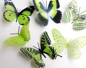 12 x Mixed Lime Green 3D Transparent Butterflies