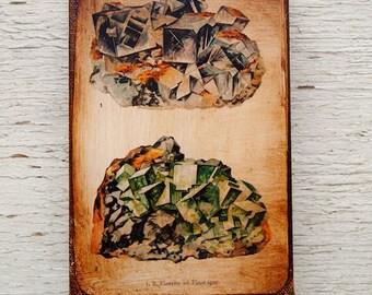 Vintage Rock & Minerals Specimens - Collection   D 4x6