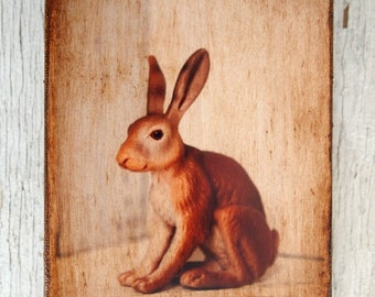 Easter - Wall Art - Toy Rabbit  Art/Photo - 4x6  Easter