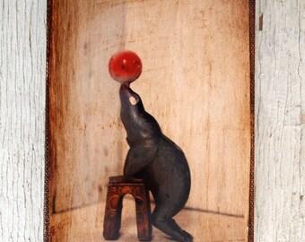 Vintage Toy Seal Art/Photo - Wall Art 4x6