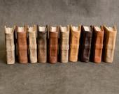 Miniature Books -Set of Ten