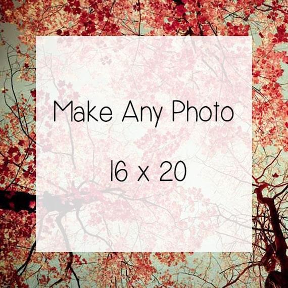 Large Photo . Personalized . Custom . Make Any Photo 16x20 . nature photography . home decor . ready to frame