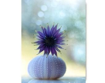 Purple Flower Photograph Flower Print Affordable Home Photography Prints Nature Photography Nature Lover Flower Botany Print Urchin