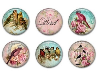 VICTORIAN BIRDS Magnets - Set of Six - 1.25 inches