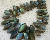 1/2 Strand-- Blue Fire Labradorite Smooth Polished Marquise Gemstone Beads--15 mm-rf1