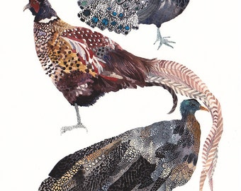 "Three Pheasants Stacked- 8"" x 10"" Archival Print"