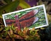 Blank Greeting Card - Dragonfly mosaic