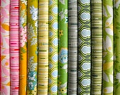 Jelly Roll Heather Bailey Nicey Jane Fabric Collection Pre-Cut Fabric Strips JRNicey13