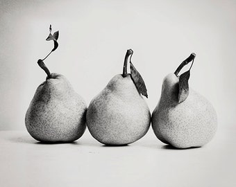 kitchen wall art fruit photograph - Pear Trio 8x10 fine art image - wall art black and white photography home decor