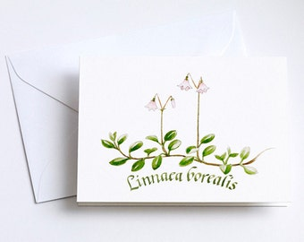 Small Greeting Cards LINNEA - set of 8