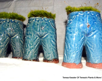 SALE-Live Mood Moss Planter-My Faded Blue Jeans Moss Planter-Ceramic Planters-Live Mood Moss
