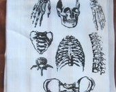Tea Towel: Parts of the Human Skeleton