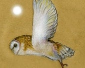 Hunter's Moon - Barn Owl in Flight (5 inches x 5 inches plus mount)