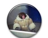 "Ikea Monkey 1"" Button"