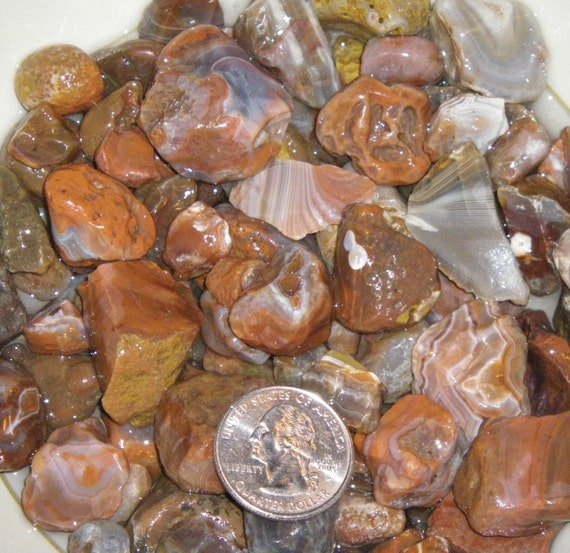 1 Pound Rough Lake Superior Agates For Tumbling By