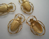 4 medium brass scarab beetle charms