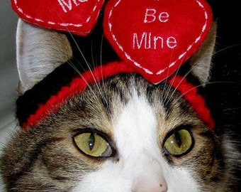 FLOATING HEARTS - WEDDING or Valentine Cat or Dog hat - Humorous - 2 to 20 lb pets-made to order