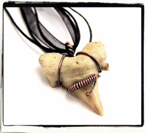 015 Shark Tooth Fossil Wire Wrapped Antique Copper Pendant