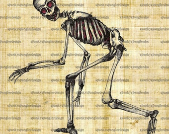 Skeleton Digital Image Download - Digital Download for Iron on Transfer, Papercrafts, T-Shirts, Tote Bags, Cushions