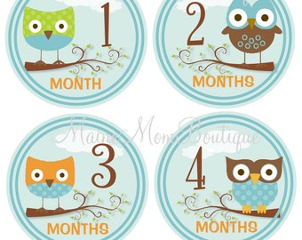 FREE GIFT, Baby Boy Monthly Stickers, Baby Month Stickers, Photo Prop, Baby Shower Gift Photo Prop Sticker Owls Blue Brown Orange Green