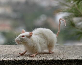 Needle Felted Animals .Wistar Laboratory Rat. Life size.
