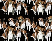 Pack of beagles fabric