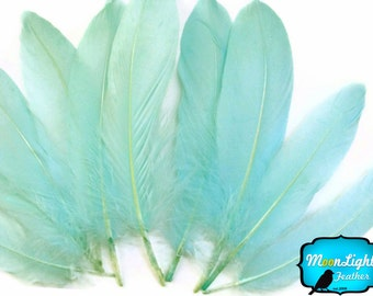 Aqua Goose Feathers, 1 Pack - AQUA GREEN Goose Satinettes Loose feathers 0.3 oz. : 2121