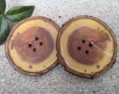 Wood Buttons - 2 Handmade Ohio Wooden Tree Branch Buttons with Bark - 2 3/4 inches, 4 holes, For Journals, Pillows, Knitting and Sewing