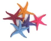 Star fish, sea stars, waldorf toy, waldorf sea creature, all natural toy, eco friendly toy
