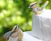 Cedar Waxwing Love Birds Cake Topper