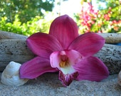 Wedding Orchid Hair Flower Tropical Flower,Beach Wedding Engagement Photo,Fuchsia Flower,Summer Wedding,Hawaiian Flower,Floral Hair Clip
