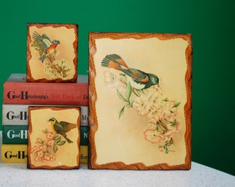 Set of 3 Vintage Wooden Bird Plaques
