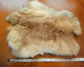 Rabbit Pelt Fur Tan Hide