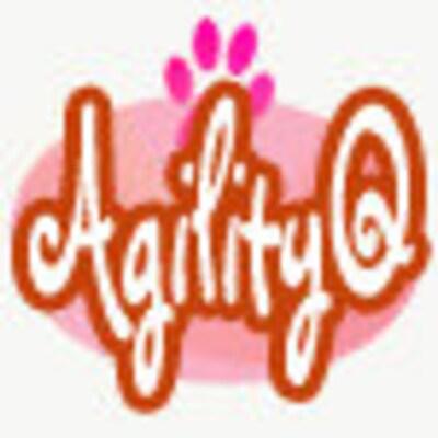 AGILITYQ
